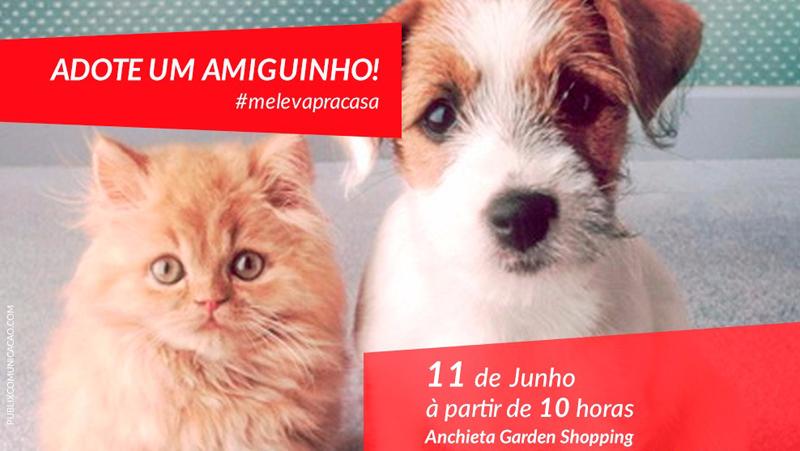 CAMPANHA DO GARDEN INCENTIVA ADOÇÃO DE ANIMAIS DE RUA